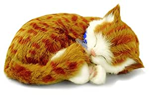 Perfect Petzzz - 65431 - Peluche Interactive - Chat - Tabby - Orange - Animal Qui Respire pour de Vrai - 25 cm
