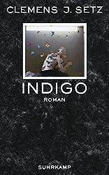 Indigo: Roman (suhrkamp taschenbuch)