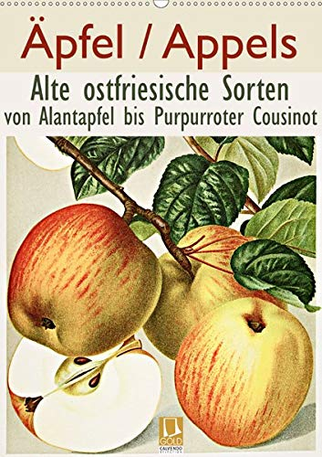 Äpfel/Appels. Alte ostfriesische Sorten (Wandkalender 2020 DIN A2 hoch): Von Alantapfel bis Purpurroter Cousinot (Monatskalender, 14 Seiten ) (CALVENDO Natur)