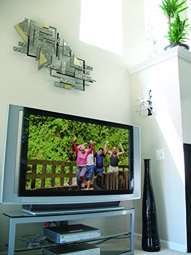 Winegard FreeVision FV-30BB Indoor and Outdoor Digital HDTV Antenna (4K Ultra-HD Ready, ATSC 3.0 Ready, High-VHF/UHF) - 30 Mile Range High Performance Digital HD TV Antenna