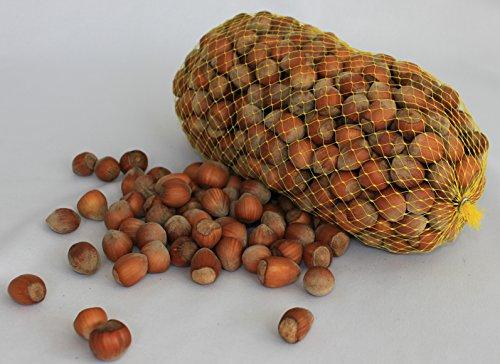 Haselnüsse aus Deutschland - 1.Wahl - Ganze Nüsse für Mensch und Tier! Oder als Nagetierfutter, Tierfutter, Futter für Eichhörnchen, Streifenhörnchen, Nagetiere und Papageien - 3 Kg