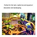 HEEPDD Reptile Vines, Artificial Reptile Climbing Branch with Suction Cups 9.84ft Flexible Jungle Rattan Long Vine Habitat Decor for Chameleon Lizards Gecko Snakes and More Reptiles from HEEPDD
