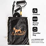 Dog Training Lead - 30 Foot Long for Pups and Dogs - Padded Foam Barrel Handle - Free Carry Bag - Made from Strong Nylon… 10