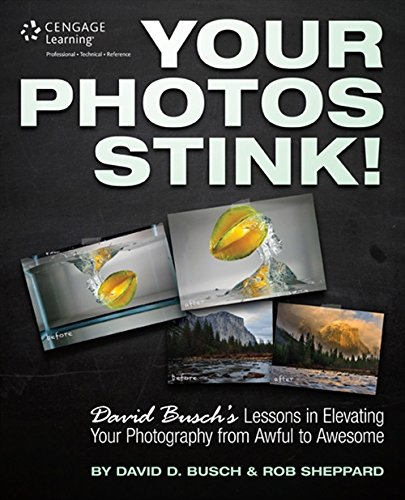 Your Photos Stink!: David Busch's Lessons in Elevating Your Photography from Awful to Awesome