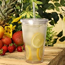 Double Wall Plastic Cups 16oz / 470ml - Set of 2 | BPA Free Plastic Tumblers with Lid and Straw