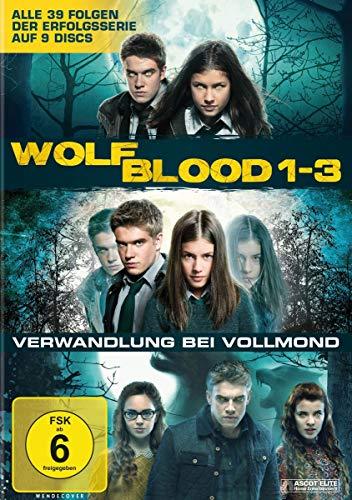 Staffel 1-3 (9 DVDs)