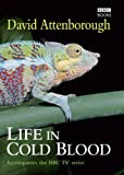 Reptiles and amphibians ruled the world for nearly 200 million years and today there are still over 12,500 of them. Some are huge, the deadliest creatures on earth. Some are tiny, among the strangest to be found anywhere. Together they not only outnu...