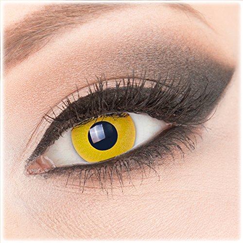 Farbige gelbe Crazy Fun Kontaktlinsen 1 Paar 'Yellow Sun' mit Kombilösung (60ml) + Behälter - Topqualität von 'Evil Lens' zu Fasching Karneval Halloween ohne - Gelb Darth Maul Kostüm