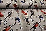 Pinidi Stoff/Meterware ab 25cm / Ökotex 100 / Jersey Fußball Panel Spieler