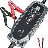 Batteria caricabatteria da auto, Autoxel 3.8 a 6 V/12 V 8 modalità Intelligent Automotive carica batterie/Mantenitore per veicoli con CC/CV ricambio per LiFEPO4 & batteria al piombo acido di umidità, MF, VRLA AGM e gel