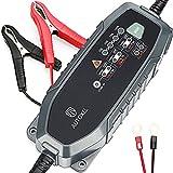 Batteria caricabatteria da auto, Autoxel 3.8 a 6 V/12 V 8...