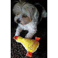 Hunde Spielzeug Kissen kleine Ente Hundespielzeug Quitscher gelb orange Name Wunschname