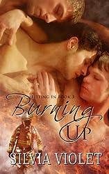 Burning Up (Volume 3) by Silvia Violet (2015-02-16)
