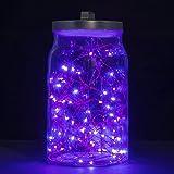 Ryham 5M / 16.4ft 50 LEDs Kupferdraht Lichterkette Batterie,Party-lichterkette au?en LED f¨¹r Indoor-Outdoor-Weihnachtsfeier Schlafzimmer Hochzeit,lila