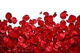 2000 Stück Rosenblätter & Rosenblüten zur romantischen Valentinstag Dekoration – künstliche Rosenblütenblätter & rote Deko Rosen Blüten Blätter für Hochzeit, Flitterwochen oder Schlafzimmer - Weihnachtsgeschenk, Xmas Geschenk