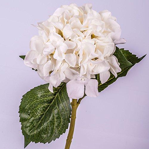 artplants Deko Hortensie, Creme, 50 cm, Ø 18 cm - Kunstblume/Dekoblume (Seidenblumen Hortensien Creme)