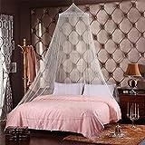 DI GRAZIA 2.5 m Mosquito NET Elegant Bed Canopy Set Including Hanging Kit