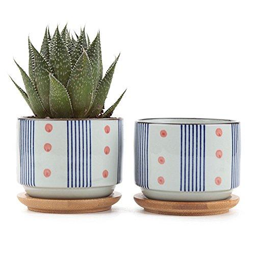 T4U Conjunto de 2 Estilo japonés de cerámica de serie No.5 Cerámicos Planta Maceta Suculento Cactus Planta Maceta Planta Contenedor Vivero Maceta Macetas de jardín Macetas Envase