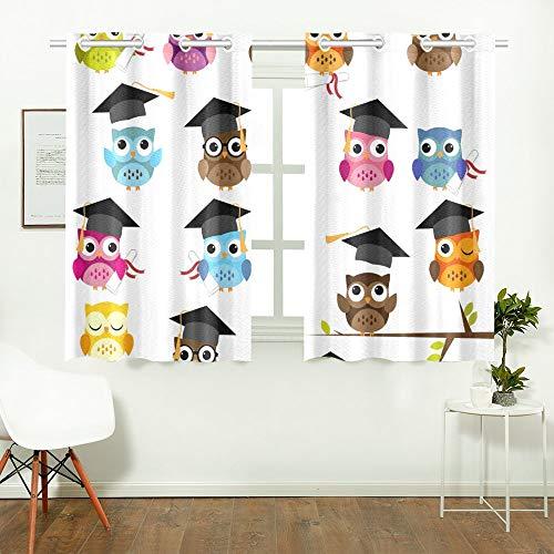 Reopx Set Cute School Graduation Themed Küchenvorhänge Fenster Vorhang Stufen für Café, Bad, Wäscheservice, Wohnzimmer Schlafzimmer 26 X 39 Zoll 2 Stück