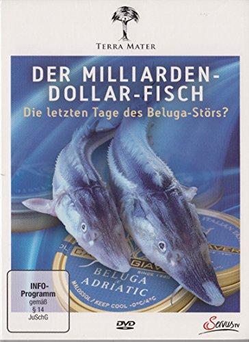 Der Milliarden-Dollar-Fisch - Die letzten Tage des Beluga-Störs?