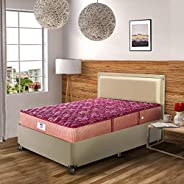 Peps Springkoil Bonnell 8-inch Queen Size Spring Mattress (Maroon, 78x60x08) with Two Free Pillow
