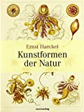 Kunstformen der Natur von Ernst Haeckel (10. Februar 2009) Gebundene Ausgabe