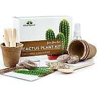 Kit pour le cactus – bricolage grandir les tue plantes de cactus au fermé – Un Cadeau Pour le jardinage inhabituel – Semini, pots, terre pour le cactus