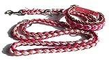 Viva Nature Handgemachtes Hunde-Halsband MIT Leine im Set/verstellbar\ Paracord-PP-Flechtleine/Geflochten/Hund (Bordeaux beige)