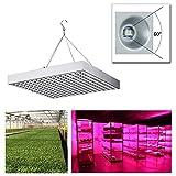KSD 15W LED Grow Lampe Pflanzenlampe Pflanzenleuchte Pflanzenlicht Wachstumslampe 225 LEDs Rot&Blau für Hydroponik Innengarten Gewächshaus Obst Blumen Gemüse tageslicht Zimmerpflanzen …