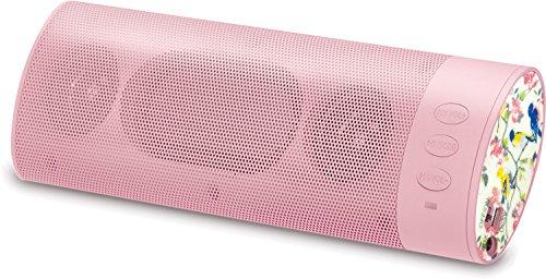 KitSound BOOMBVB  KitSound BoomBar Universal Tragbares Aufladbares Stereo Bluetooth Wireless Lautsprecher Kompatibel mit Apple iOS und Android Smartphones, Tablets und MP3 Geräten - Vintage Vogel Vintage Vogel