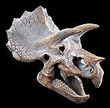 Wandrelief Triceratops Totenkopf | Dinosaurier Kopf | Figur Schädel Skelett Dino Saurier