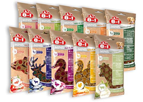 8in1 Minis Mega-Selection Hundesnack (10 x 100 g)