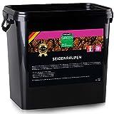 WAGNER Seidenraupen getrocknet - 10 Liter (3 kg) Seindenraupenpuppen Farbfutter Color Koi Snack - Ideals Koifutter, Fischfutter auch für Reptilien & Schildkröten - Proteinfutter in Premiumqualität