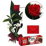 Rosa roja natural preservada 37-40 cm + biscuits LU 150 g + tarjeta personalizada de regalo