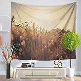 JokerDmask Tapisserie Wandteppich Wall Hanging Tapestry Bed Sheet Comforter Bedspread Beach Yoga Twilight Hilltop Meadow Schöne Landschaft 150Cm * 100Cm