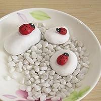 100 Pcs Mini 3D Plastic Ladybird Wall Stickers Home Decor DIY Ladybug (Red)
