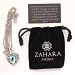 Zahara Pet Memorial Urn Necklace (20 Inches) with Velvet Pouch & Funnel | Angel Heart Aquamarine Pendant + Chain 11