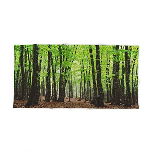 Xcvgcxcvasda - telo da bagno the forest of dreams 80 x 130 cm, per spiaggia, casa, spa, piscina, palestra, viaggi, design unico