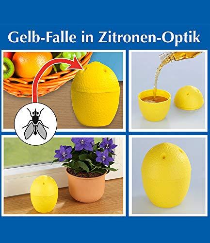 2 Stück Zitrone (Wenko Gelb-Falle in Zitronen-Optik,2 Stück)