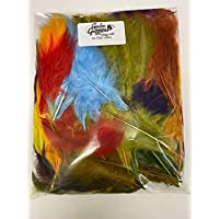 Top Quality Gordon Griffiths French Partridge Feathers 12 Colours Available
