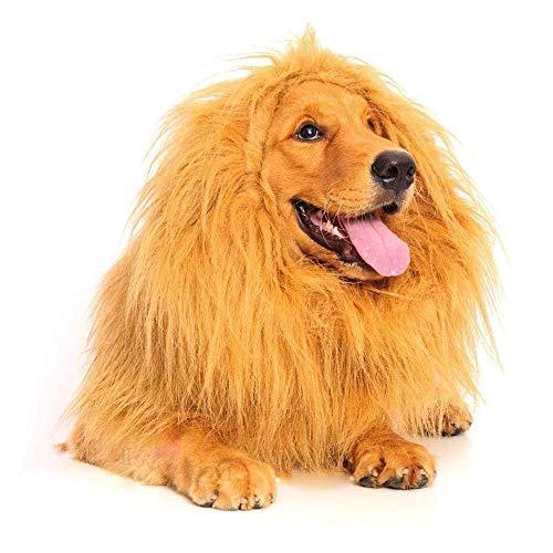 Bis Kostüm Hunde - CZY Löwenmähnen-Kostüm für Hunde, Haustierkostüm Löwenmähne Perücke Haar, für kleine bis große Hunde für Kleidung Festival Kostüm