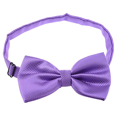 SODIAL(R)Cravate Pre Liee Hommes Pur Papillon Polyester Mariage le violet clair