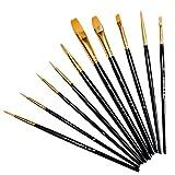 Pennello per impostare 10 set Professional Pennelli artista per Acquerello Olio Pittura Acrilica
