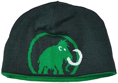 Mammut Erwachsene Beanie Logo