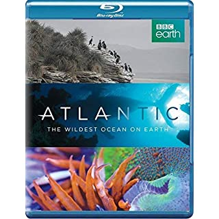 Atlantic: The Wildest Ocean on Earth [Blu-ray]