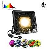 COB LED Lampe de Plante Relassy 50W Lampe de Croissance pour Plantes à Spectre Complet Lampe Horticole LED pour Plantes, Légumes et Fleurs d'Intérieurs IP67 Plante Projecteur Etanche Blanc Chaud