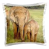 "3dRose pc_71690_1 Elephants, Corbett National Park, Uttaranchal, India-AS10 JRA0017-Jag deep Rajput-Pillow Case, 16 by 16"""