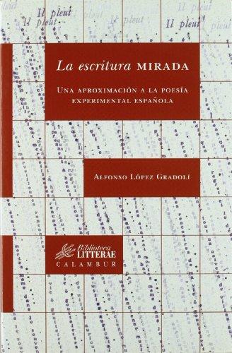La escritura mirada: Una aproximación a la poesía experimental española (Biblioteca Litterae)