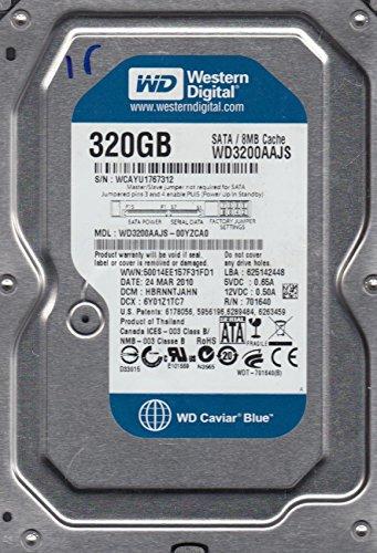 DCM HBRNNTJAHN, Western Digital 320GB SATA 3.5 Festplatte ()