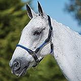Kincade cavezza in pelle corda Blue Pony